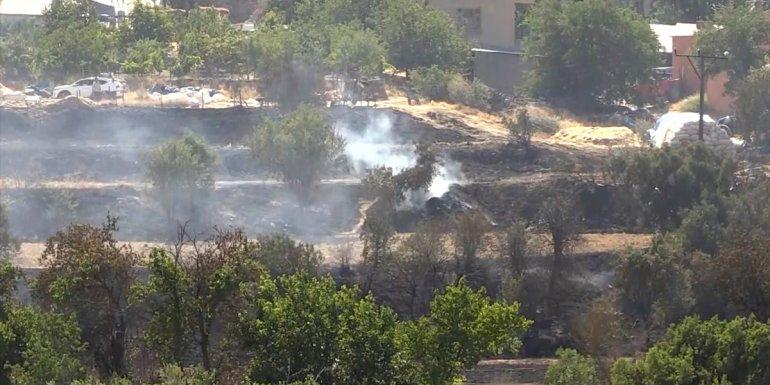 Elazığ'da yangın nedeniyle buğday tarlası, meyve ağaçları ve üzüm bağları zarar gördü - Elazığ Haberleri