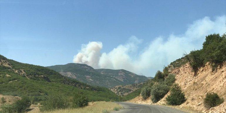 Bingöl'deki orman yangınına müdahale sürüyor