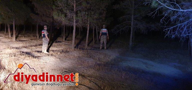 Malatya'da orman jandarma sürdürdü denetimlerini 3