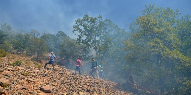 Munzur Vadisi Milli Parkı'ndaki ormanlık alanda çıkan örtü yangınına müdahale devam ediyor