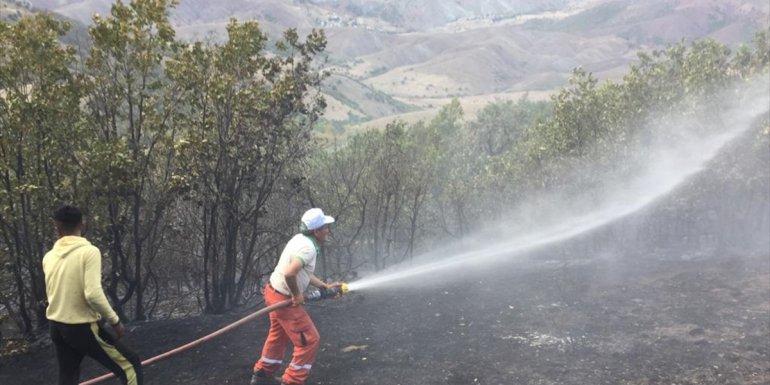 Erzincan'da orman yangını, mangal kömürü üreticilerinin müdahalesiyle büyümeden söndürüldü