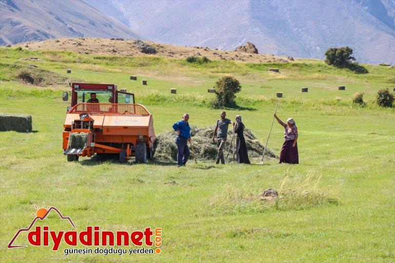 Ağrı kış - çiftçiler hazırlığına eteklerindeki başladı IĞDIR Dağı 1