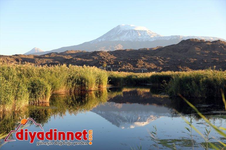 IĞDIR Dağı'nın zirvesi karla yeniden kaplandı Ağrı - 4