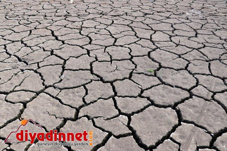 da Kuraklık hayat Barajı'nı tarımın ve kaynağı kuşların vurdu Patnos 8