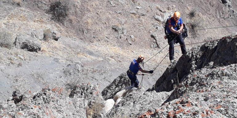 Van'da kayalıklarda mahsur kalan koyunlar kurtarıldı